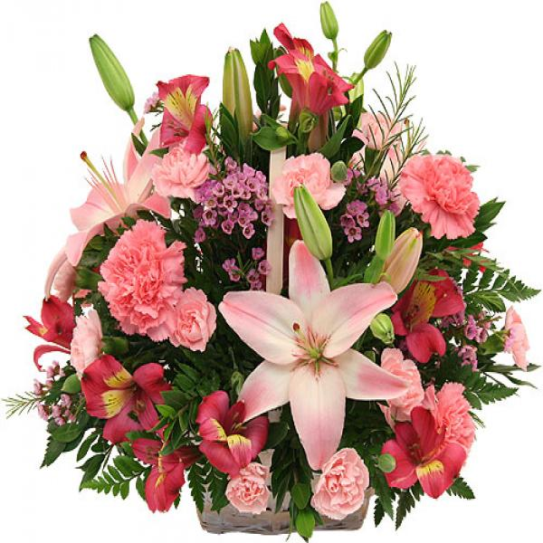 Pink flowers in a basket flowers to ontario canada delivery pink flowers in a basket mightylinksfo